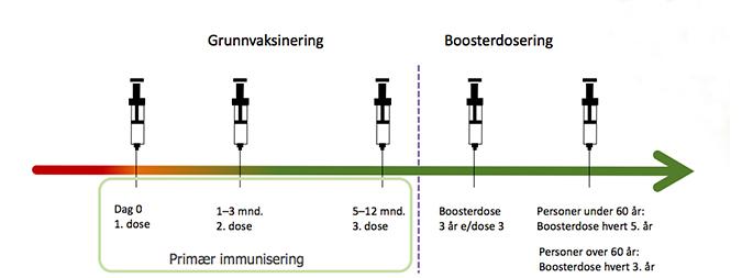 TBE grunnvaksinasjon og booster